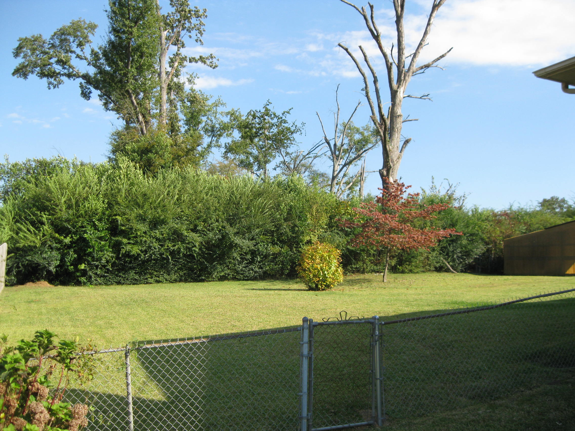 Fenced Back Yard!